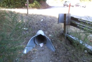 This is a culvert that crosses under Highway 17.  Many different species, such as pumas, bobcats, skunks, coyotes, etc. may use crossing structures like these to make their way across dangerous highways.  Photo taken by Tanya Diamond